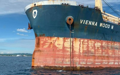 Court orders MV Vienna Wood's crew to remain in PH