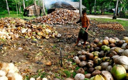 Duterte inks law creating coco levy trust fund