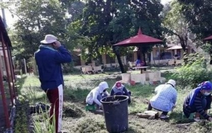 'Let a Million Flowers Bloom' project taps TUPAD workers