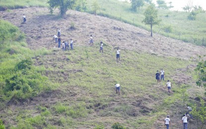 Reforestation project launched to boost Tarlac's greening program