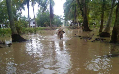 NoCot town disaster workers distribute aid to 21K flood victims