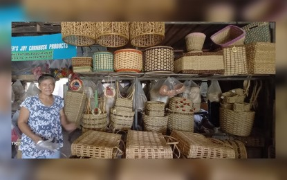 Biz owners' grit, gov't measures to buoy MSMEs amid pandemic