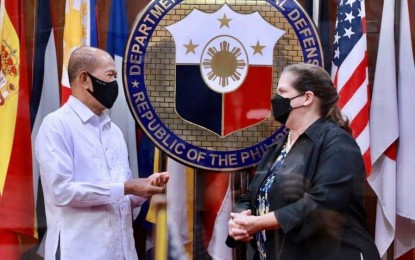 Defense chief thanks US for supporting PH efforts vs. Covid-19
