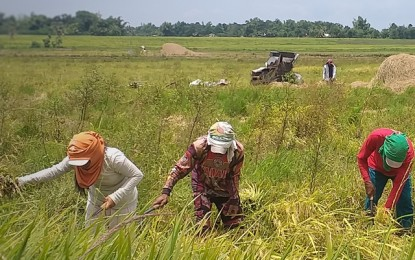 House OKs bill giving cash aid to farmers on 3rd reading