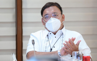Roque shrugs off criticism on joining int'l law body