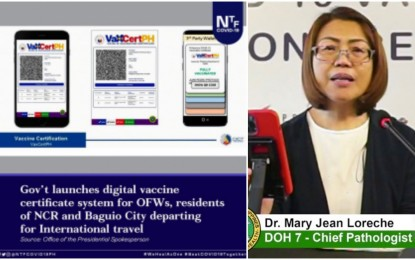 LGUs urged to fast-track data input for vax certificate launch