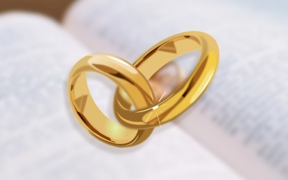 House panel pushes for virtual marriage bill